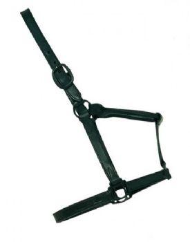 Leather Halter Black Buckle